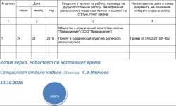 Отчет по страховым взносам строка 040