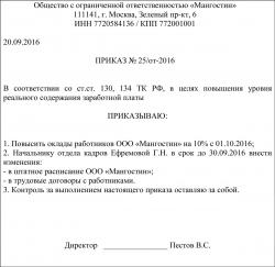 Нормативно правовой акт регулирующий оплату труда директора муп