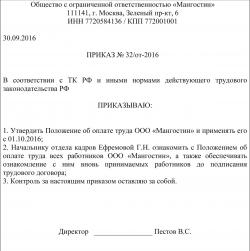 образец приказа на утверждение положения об оплате труда образец - фото 6