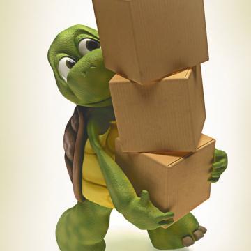 Черепахе, конечно, проще: ее дом всегда при ней. Авот работодателю придется перевозить не только офис, но и сотрудников. Да еще и компенсировать им расходы по обустройству на новом месте