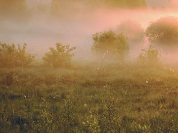Не напускайте туман на сроки выплаты зарплаты— зафиксируйте четкие даты