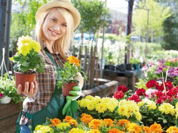 Вмененщики, торгующие на рынке цветами, могут и чек не пробивать, и БСО не выдавать своим покупателям