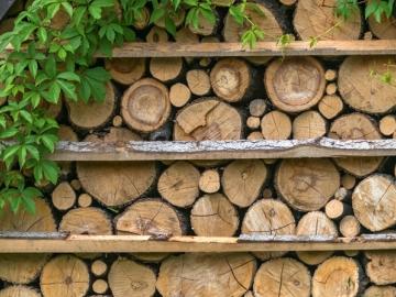 Если директор наломал дров, то на увольнительные компенсации он может не рассчитывать, даже если условие о таких выплатах прописано в его трудовом договоре