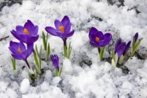 Новости: Прочие события за 9 - 11 марта