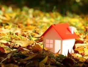 Новости: УСН: как учесть арендные платежи за землю под строительство