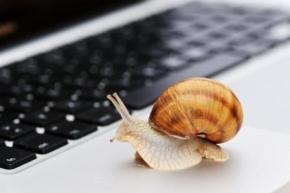 Новости: Электронные трудовые книжки появятся не скоро