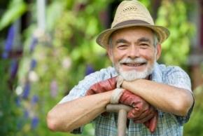 Новости: Пенсионерам не придется платить земельный налог за свои 6 соток
