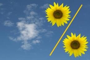 Новости: Уменьшение «прибыльной» базы на убытки прошлых лет: применять ли ограничение